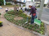 植え付け後はたっぷりと水をやります。
